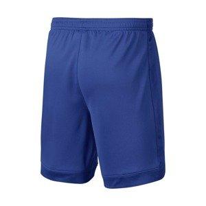 Spodenki Nike Dry Academy Junior (AO0771-480)